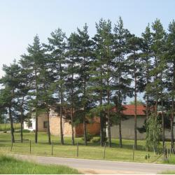 Имот в село Гуцал, община Самоков