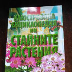 Енциклопедия на стайните растения