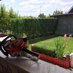 Градинар, Озеленител