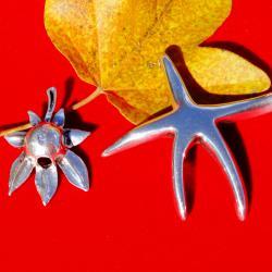 Сребърна висулка морска звезда.