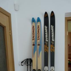Ски Dynamic, Salomon и щеки Masters