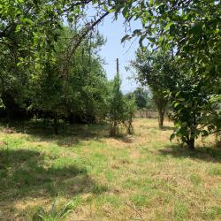 Топ имот в село Туроковци
