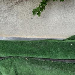 зелена трева