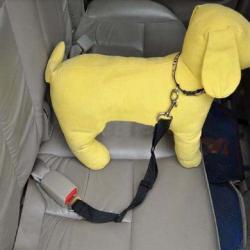 Seatbelt - обезопасителен колан за куче при превоз с кола